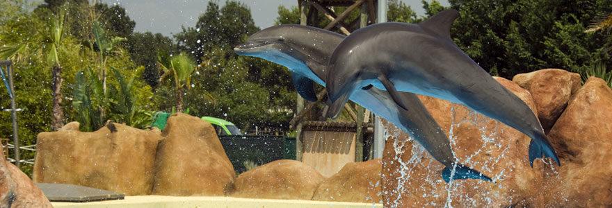 un week-end en famille dans un parc aquatique